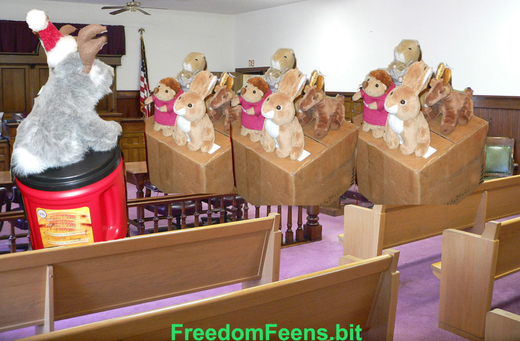jury of your Feens